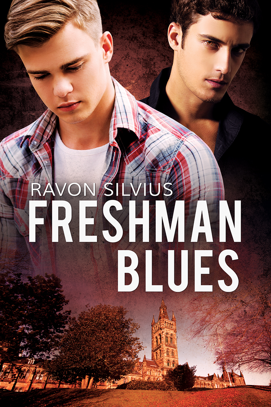 freshmen blues The difficulty of the workload i will get a dozen or more phone calls over the holiday weekend from panicked parents who are convinced that their child needs to transfer.