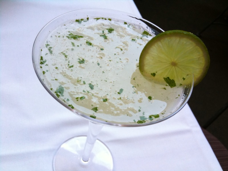 Gimlet_cocktail