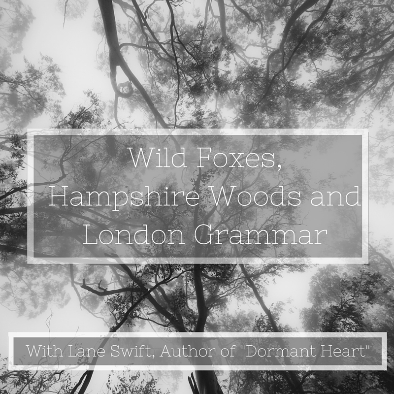 Wild Foxes, Hampshire Woods and London Grammar