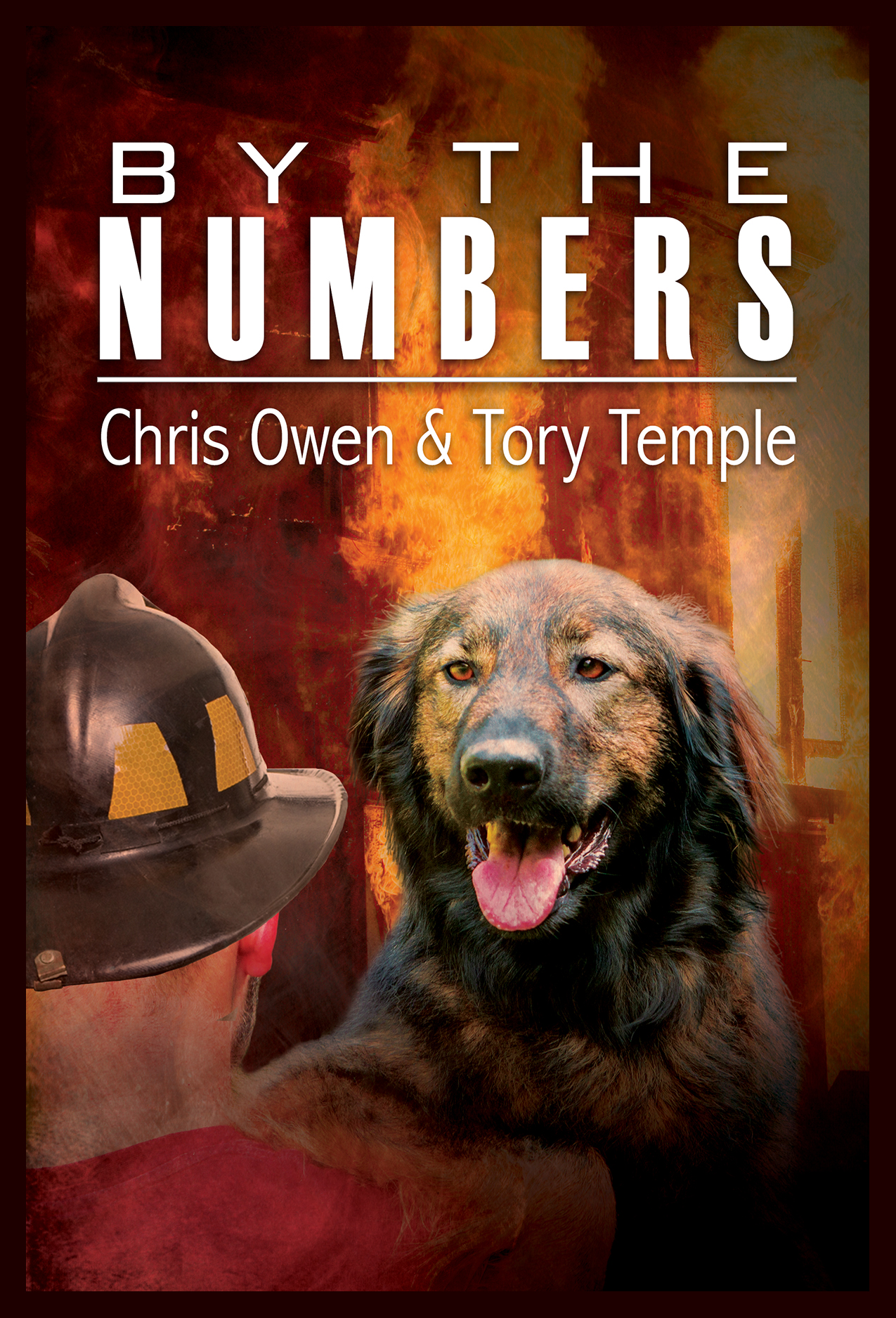 By the Numbers by Chris Owen & Tory Temple